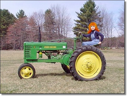 Isn't this a cute little tractor??!!